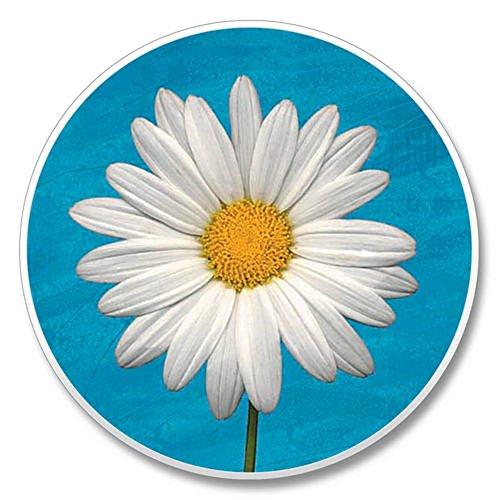 White Daisy - Single Ceramic Car Coaster by Highland - White Daisy Single