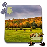 3dRose Danita Delimont - Agriculture - Hay bales in autumn meadow near Bruce Crossing, Michigan USA - 10x10 Inch Puzzle
