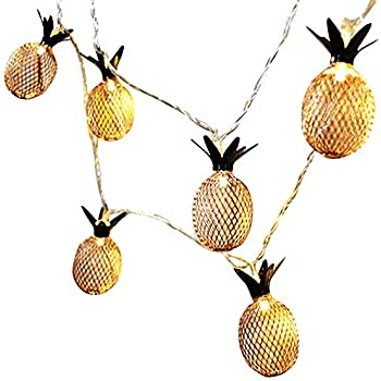 Warm white OHSEE 5 FT 10 LED String Lights with Rose Gold Metal Pineapple Cage Battery Operated Fairy Lights Great for Home Patio Bedroom Room Garden Wedding Party Indoor Wall Decoration