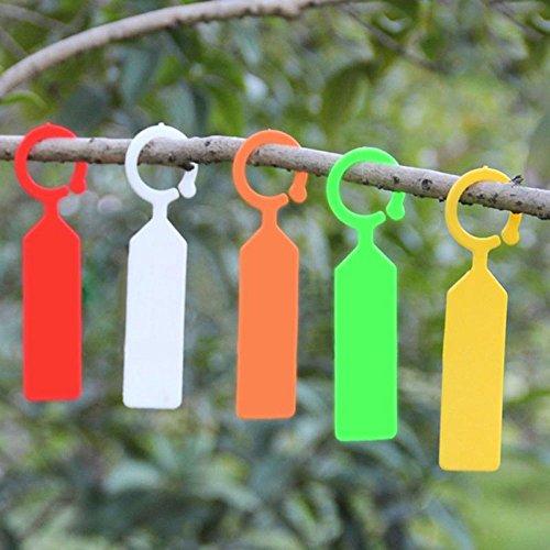 Lautechco 100pcs Hanging Plant Waterproof Tags Garden Flower Vegetable Planting Label Tools (Orange) by Lautechco® (Image #2)
