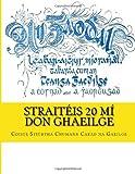 StraitéIs 20 Mí Don Ghaeilge, Coiste Stiúrtha Coiste Stiúrtha Chumann Carad na Gaeilge, 1496111168