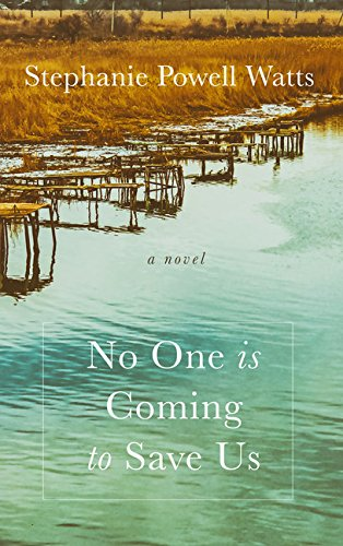 No One Is Coming to Save Us (Thorndike Press Large Print African-American) pdf epub