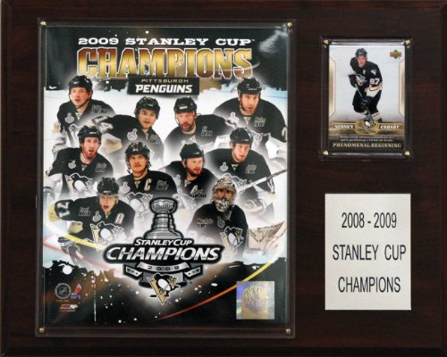 NHL Penguins 2008-09 Stanley Cup Champions Player (09 Penguins)