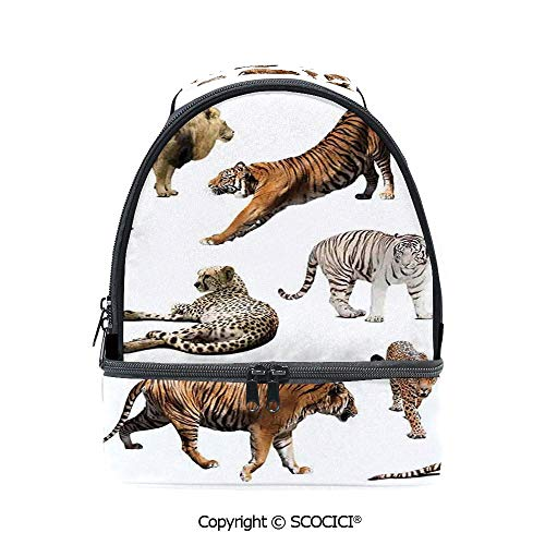 (SCOCICI Large Capacity Durable Material Lunch Box Collection of Tigersand other Big Wild Cats Predatory Feline Zoo Lying Standing Background Multipurpose Adjustable Lunch Bag)