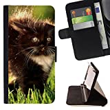 BOOK CASE - FOR Apple iPod Touch 6 6th Generation - Black Fluffy Kitty - Folio PU Wallert Leather Case