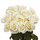 GlobalRose 100 White Roses- Wholesale Express Delivery-Beautiful Fresh Flowers
