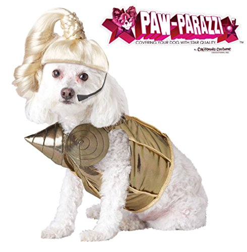 Fancy Pop Queen Madonna Dog Pet Costume (Beauty Queen Fancy Dress)