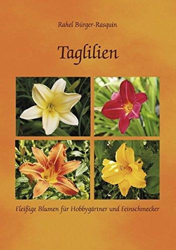 Taglilien: Fleißige Blumen für Hobbygärtner und Feinschmecker