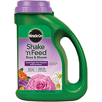 Miracle-Gro Shake 'n Feed Continuous Release Rose and Bloom Plant Food, 4.5-Pound (Slow Release Plant Fertilizer)