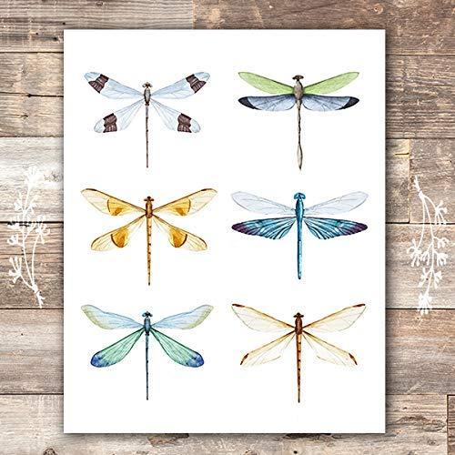Dragonfly Wall Art Print - Unframed - 8x10 (Art Dragonfly Wall)