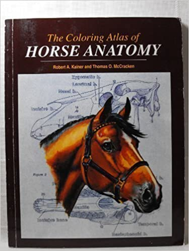 Coloring Atlas of Horse Anatomy: 9780931866692: Medicine & Health ...