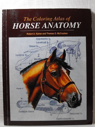 Coloring Atlas of Horse Anatomy by Brand: Alpine Pubns Inc