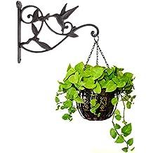 Hanging Plant Hook Hummingbird Cast Iron Decorative Flower Basket Wall Hanging Hooks Bracket Hanger for Indoor Outdoor Plants Bird Feeder Lantern Planters Flower Pots Wind Chimes