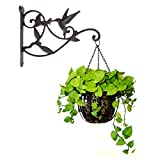 Hanging Plant Hook Hummingbird Cast Iron Decorative Flower Basket Wall Hanging Hooks Bracket Hanger for Indoor Outdoor Plants Bird Feeder Lantern Planters Flower Pots Wind Chimes