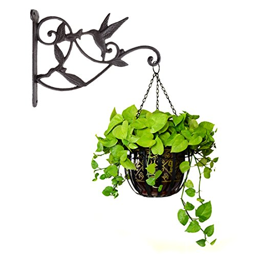 Hanging Plant Hook Hummingbird Cast Iron Decorative Flower Basket Wall Hanging Hooks Bracket Hanger for Indoor Outdoor Plants Bird Feeder Lantern Planters Flower Pots Wind Chimes -