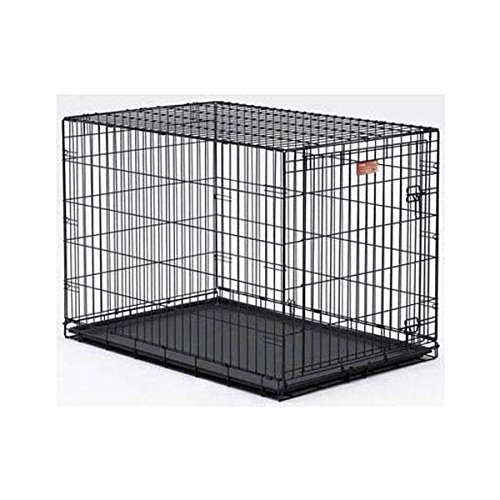 Large Midwest Life Stages - Midwest Life Stages Single Door Dog Crate 22