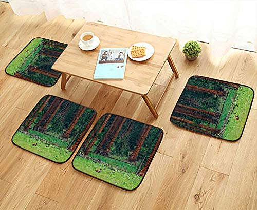 Printsonne Luxurious Household Cushions Chairs Baby ars Field Nature Area Recreati Rest Sequoia Tree Soft and Comfortable W31.5 x L31.5/4PCS Set