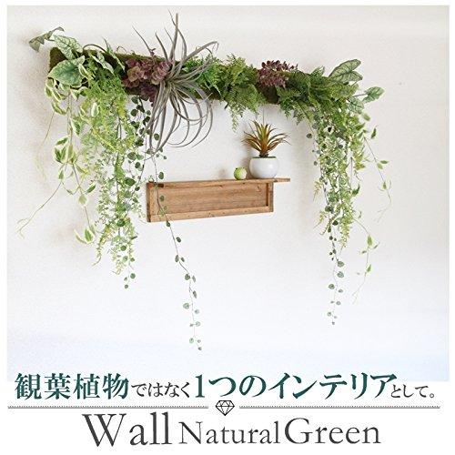 ウォールナチュラルグリーン