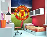 1Wall Manchester United Football Wall Mural
