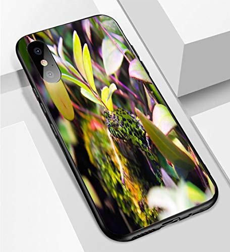 iPhone X/XS Ultra-Thin Phone case Poisonous Tropical Green and Black Spotted Frog Anti-Drop Anti-Slip Soft Convenient Protective Shell