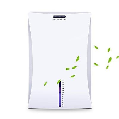 .com - LATITOP Small Dehumidifier, Quiet Electric Dehumidifier with 2000ml Detachable Water Tank, High Humidity, Compact and Portable Mini Dehumidifier for Basement Bathroom Bedroom Closet Garage Home Office -