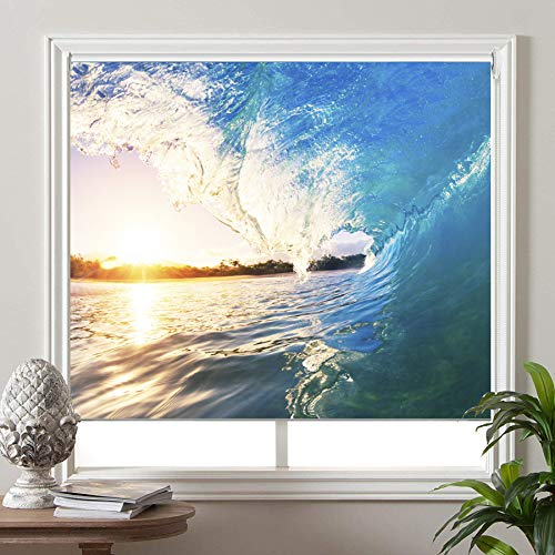 PASSENGER PIGEON Blackout Window Shades, Premium UV Protection Water Proof Custom Roller Blinds, Printed Picture Window Roller Shade,23
