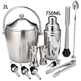 Bar Set with ice Bucket,10 pcs Stainless Steel Bartender mixology kit with Cocktail Shaker Jigger and More Professional Barware Tools-C