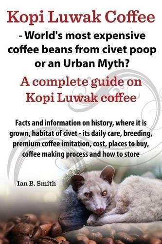 Kopi Luwak Coffee - World's Most Expensive Coffee Beans from Civet Poop or an Urban (Civets Animals)