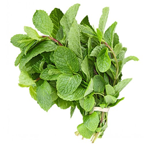 (Fresh Mint Leaves (3 oz.) )