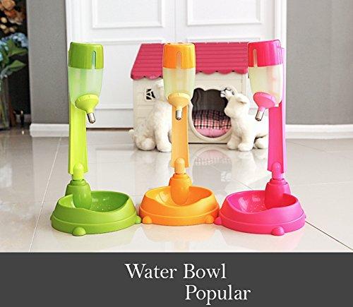 Alpha Dog Series Water Feeder - Green ()