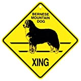 Bernese Mountain Xing caution Crossing Sign dog Gift