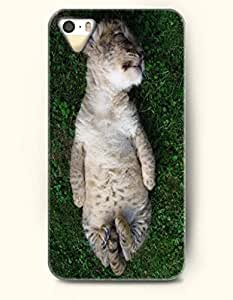 SevenArc Phone Case for Apple iPhone 5 5S (NOT COMPATIBLE WITH iPhone 5C) -- Cute Cat Sleeping On Grassland -- Design...