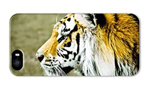 Do It Yourself DIY iphone 5 protective cover Tiger face side view blur background PC 3D for Apple iPhone 5/5S