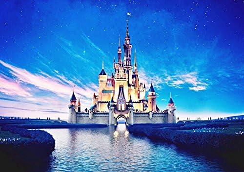 絵画風 壁紙ポスター (はがせるシール式) ディズニーワールド 星空とシンデレラ城 キャラクロ DNW-010A2 (A2版 594mm×420mm) 建築用壁紙+耐候性塗料