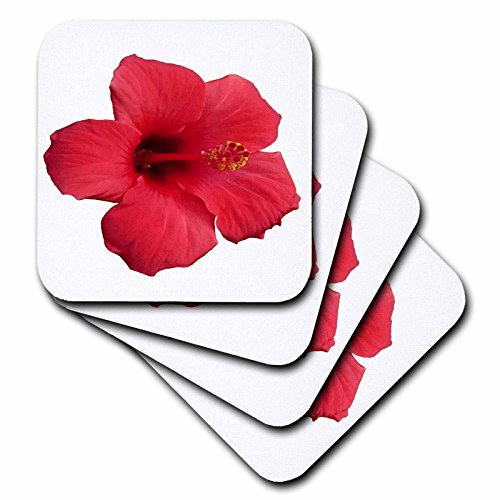 3dRose Taiche - Photography - Hibiscus - Stunning Red Hibiscus Flower - set of 4 Ceramic Tile Coasters (cst_273643_3)