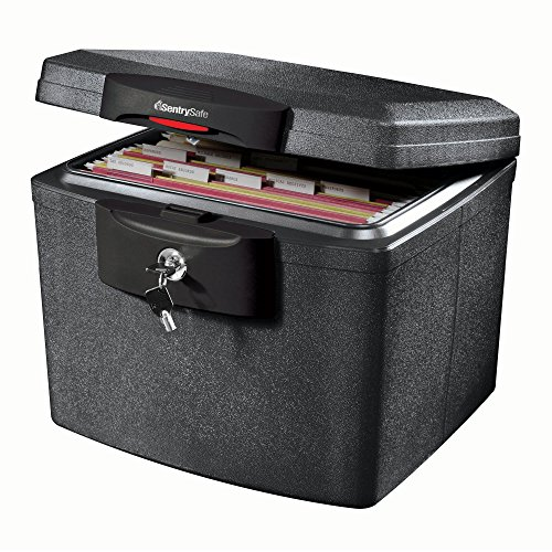 SentrySafe H4300 FIRE-SAFE Waterproof File, 0.68 Cubic Feet, Silver Gray ()