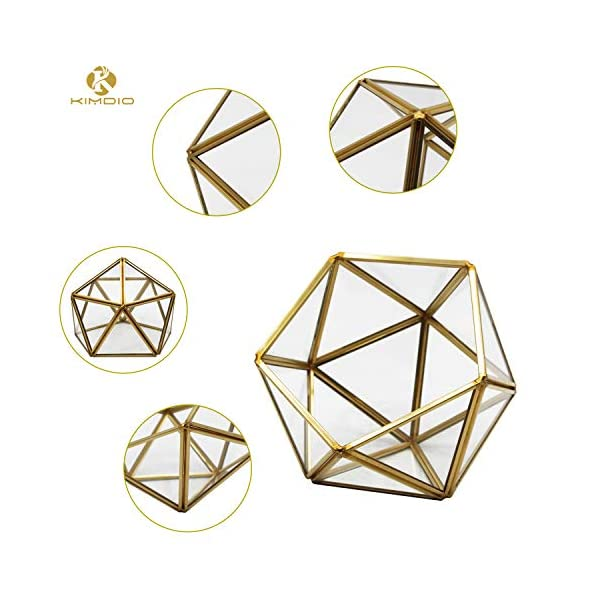 Kimdio Geometric Terrarium Clear Glass Tabletop Planter Air Plant Holder Display For Succulent Fern Moss Air Plants Holder Miniature Outdoor Fairy Garden Diy Gift M Gold