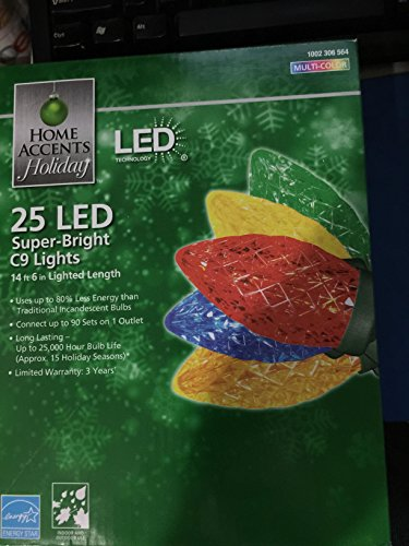 Home Accents C9 Led Lights in Florida - 6