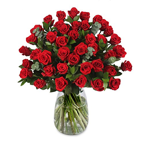 eFlowy 40 Red Roses for a Special Ocassion (40 Roses)