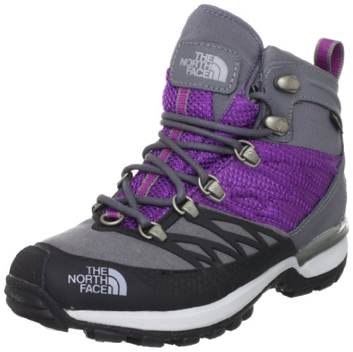 UPC 715752871746, The North Face Womens Iceflare Mid GTX Boot Zinc Grey Premiere Purple 8