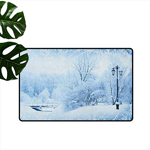 Winter,American Floor mats Winter Trees in Wonderland Theme Christmas New Year Scenery Freezing ICY Weather 36