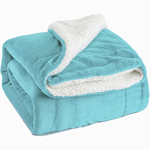 Sherpa Throw Blanket Lt Blue Twin Size Reversible Fuzzy Bed Blankets Microfiber All Seasons Luxury Fluffy Blanket for Bed or Couch 60