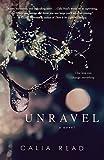 Unravel: A Novel (Fairfax)