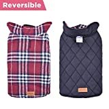 Dog Vest Winter Waterproof Outwear Jackets for Dogs Available in S, M, L, XL,XXL Sizes (XXL Red) For Sale