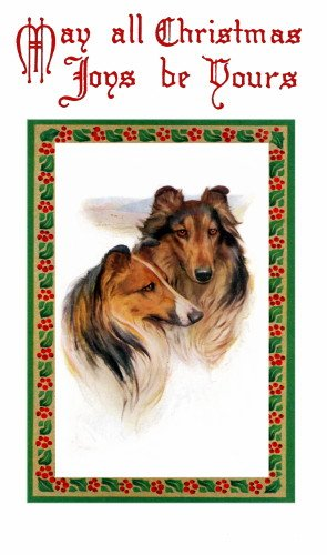 Antique Christmas Art~Holly Border~Collie Puppy Dog Profiles~6 pack NEW Matte Vintage Picture Large Blank Note Cards with Envelopes