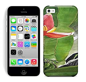 Running Gary Banana Blossom Painting Hard Phone Case For Iphone 5C