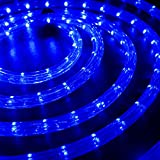 WYZworks 25 feet 1/2'' Thick BLUE Pre-Assembled LED Rope Lights with 10', 50', 100', 150' option - Christmas Holiday Decoration Lighting | UL Certified
