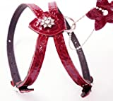Rhinestones Luxury Red Leather Dog Harness for Toy Breeds with Crystal Diamantes X-Small. Suggested for 10″-13″ Chest., My Pet Supplies