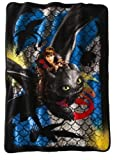 How to Train Your Dragon 2 Dragon Scale Super Plush Throw 46x60 by Northwest