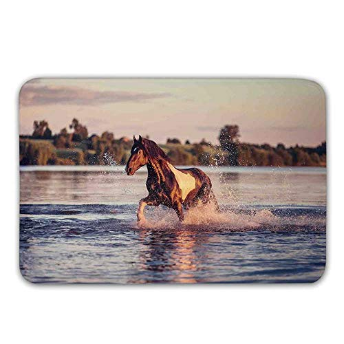 TecBillion Horses Non Slip Rubber Entrance Rug,Horse Galloping Forward in Lake Spirit Winds Emblem of Freedom and Stability Theme Doormat for Front Door,23.6
